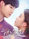 I Fell in Love By Accident (2020) ซับไทย 2 dvd-จบค่ะ